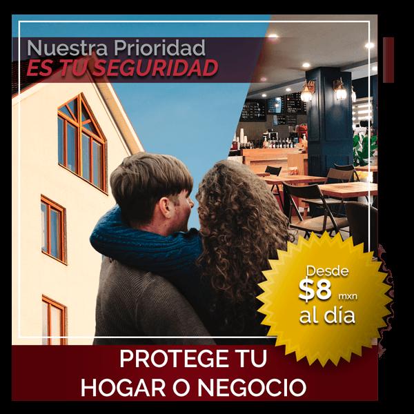 protege tu hogar o negocio promoción